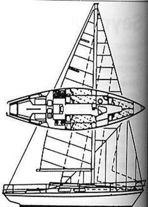 She - 32c