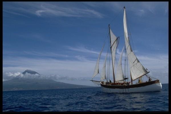 Traditional - Staysail Schooner