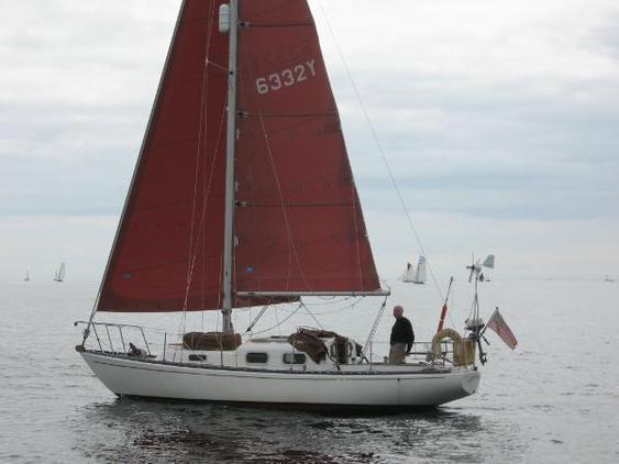 Trintella - 29