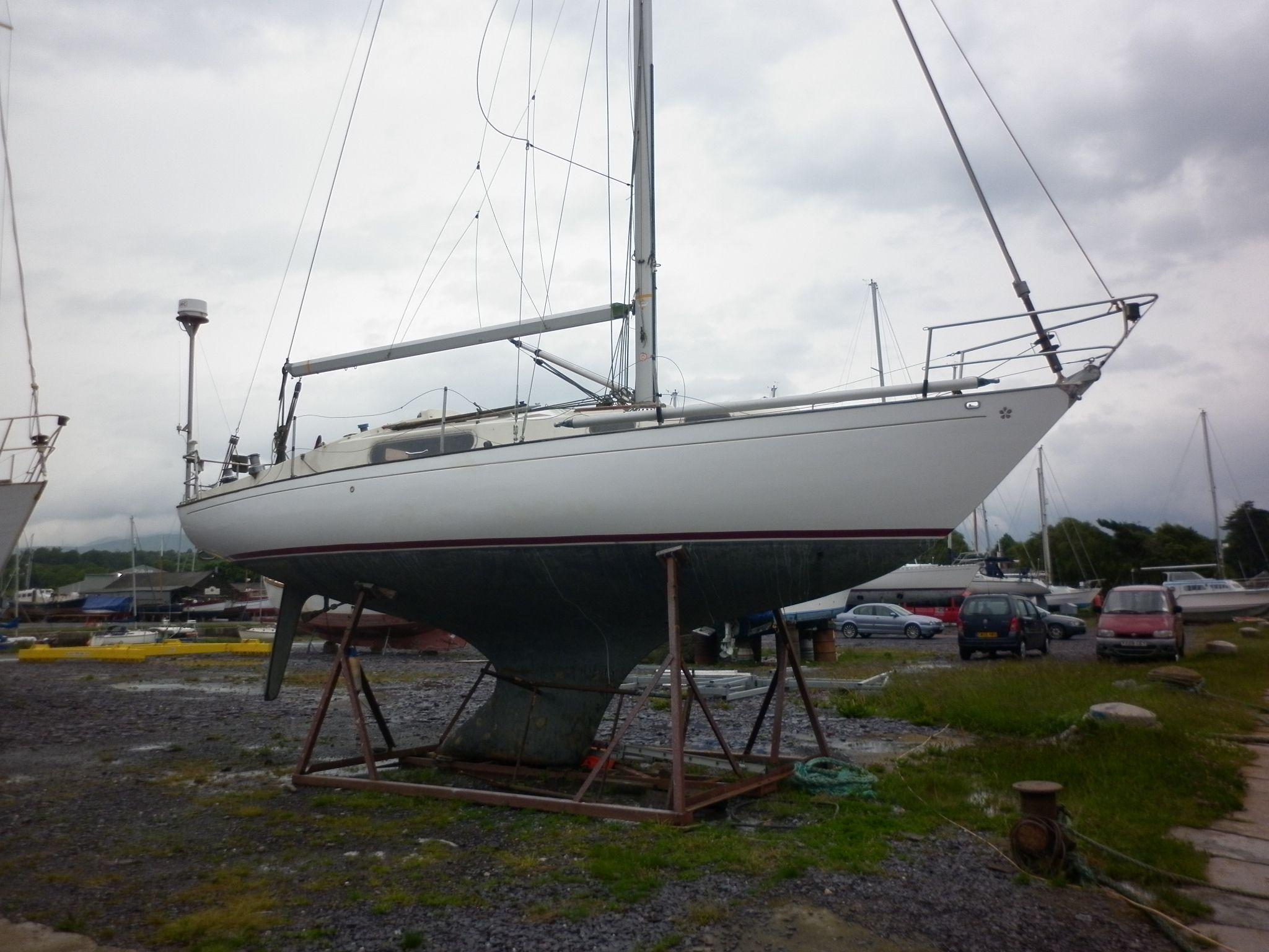 Seeker 31, Gwynedd