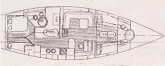 Trintella 53