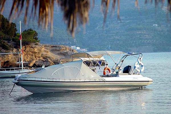 Ribeye Mediterranean S1050